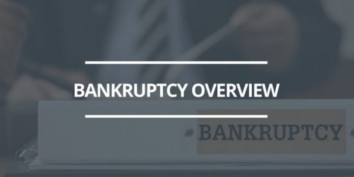 how much does a chapter 7 bankruptcy cost in michigan